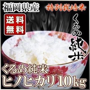くるめ純米 ヒノヒカリ 10kg くるめ純米|truetools