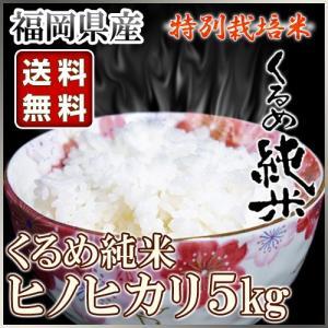 くるめ純米 ヒノヒカリ 5kg くるめ純米|truetools