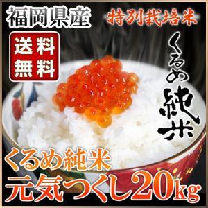 くるめ純米 元気つくし 20kg 10kg×2袋 くるめ純米|truetools