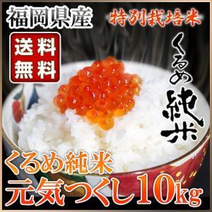 くるめ純米 元気つくし 10kg くるめ純米|truetools