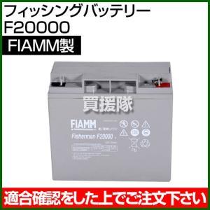 FIAMM フィッシングバッテリー F20000|truetools
