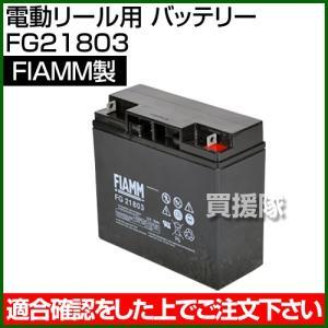 FIAMM 電動リール用 バッテリー FG21803|truetools