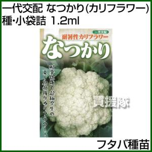 フタバ種苗 一代交配 なつかり カリフラワー 種・小袋詰 1.2ml|truetools