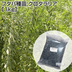 緑肥 種 クロタラリア 1kg マメ科 線虫抑制 フタバ種苗 truetools