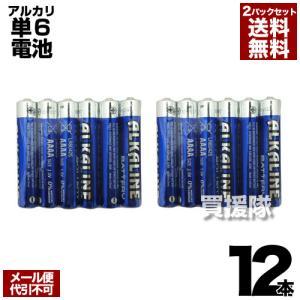 アルカリ乾電池 単6電池 6本入 2パックセット 合計12本 ヒラキ|truetools