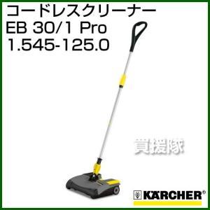 ケルヒャー バッテリー コードレスクリーナー EB30/1Pro No.1.545-125.0 付属:バッテリー2個・充電器1個|truetools