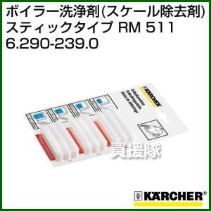 ケルヒャー RM 511 ボイラー洗浄剤 スケール除去剤 スティックタイプ 6.290-239.0|truetools