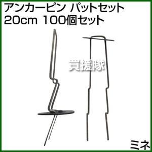 ミネ アンカーピン パットセット 20cm 100個セット