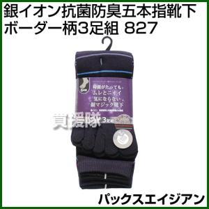 パックスエイジアン 銀イオン抗菌防臭五本指靴下ボーダー柄3足組 PAX-827|truetools