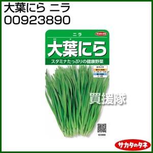 サカタのタネ 実咲野菜3890 大葉にら ニラ 00923890 truetools