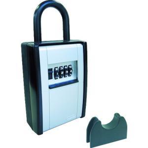 (期間限定 ポイント10倍)アバス社 ABUS カードとカギの預かり箱 DS-KB-2