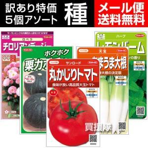 期限切れタネ 訳あり 野菜の種 花の種 ハーブの種 から選択 5袋セット メール便 5袋セット|truetools