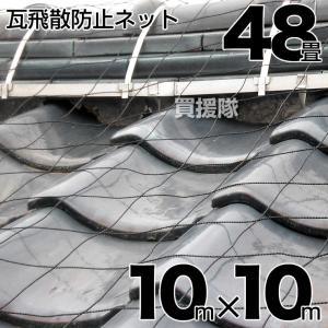 屋根瓦飛散防止用ネット 48畳 10mx10m|truetools