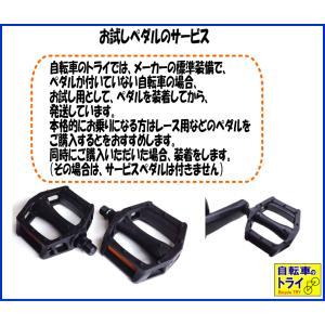 送料無料 BIANCHI(ビアンキ) ロードバイク IMPULSO 105 53 CK16|trycycle|05