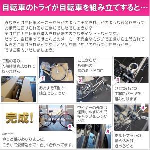 ブリヂストン クロスバイク シルヴァ YF2444 EXアーバンコーラル 440mm trycycle 02