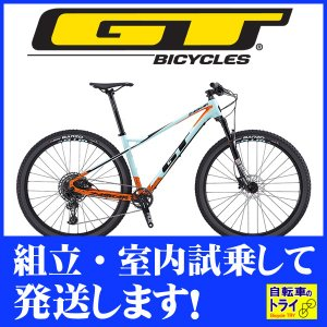 送料無料 GT マウンテンバイク MTB ZASKAR CARBON ELITE (29) ターコイズ 2019 【北海道、九州、沖縄、離島は送料別】 trycycle
