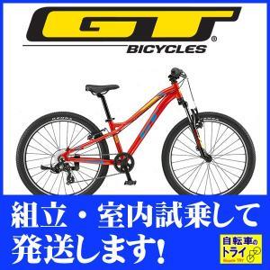 GT キッズ 子供用自転車 STOMPER PRIME 24 U レッド 2019|trycycle