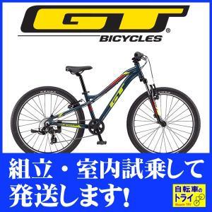 GT キッズ 子供用自転車 STOMPER PRIME 24 U スレートブルー 2019|trycycle