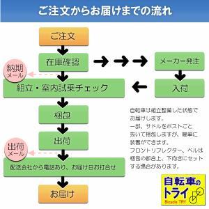 ミヤタ(MIYATA) クロモリロードバイク イタルスポーツ AYIT487/507/527/547/567 クリムゾンレッド|trycycle|03