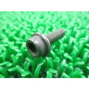 新品 スズキ 純正 バイク 部品 スカイウェイブ250 テンショナーアジャスターボルト 07120-06203-000 07120-0620B-000 車検 Genuine セピア ts-parts