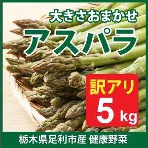足利産 アスパラ 5kg 訳あり 不揃い セット アスパラガス 栃木県 野菜  産地直送