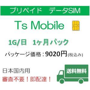 データ通信 日本国内 ドコモ 格安SIM 高速データ容量1G/日1ヶ月プラン(Docomo 格安SIM 1ヶ月パック)|tsmobile