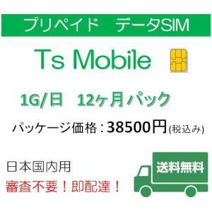 格安SIM プリペイドsim 日本国内 ドコモ 高速データ容量1G/日12ヶ月プラン(Docomo 格安SIM 12ヶ月パック)プリペイドsim|tsmobile