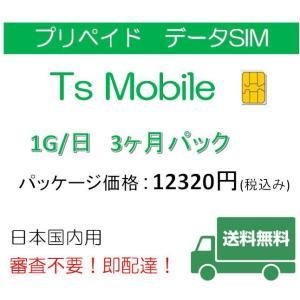 ドコモ 格安SIM プリペイドsim 日本国内 高速データ容量1G/日3ヶ月プラン(Docomo 格安SIM 3ヶ月パック)|tsmobile