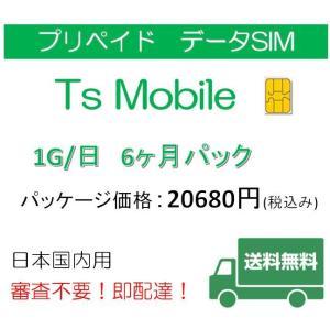 格安SIM プリペイドsim 日本国内 ドコモ  高速データ容量1G/日6ヶ月プラン(Docomo 格安SIM 6ヶ月パック)|tsmobile