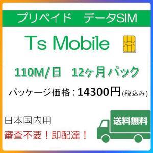 ドコモ 格安SIM プリペイドsim 日本国内 高速データ容量110M/日12ヶ月プラン(Docomo 格安SIM 12ヶ月パック)|tsmobile