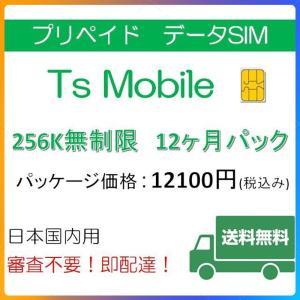 ドコモ 格安SIM プリペイドsim 低速無制限12ヶ月プラン(Docomo 格安SIM 12ヶ月パック)|tsmobile
