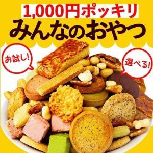 ポイント消化 1000円ポッキリみんなのおやつ 焼き菓子 お試し クッキー フロランタン あめがけナッツ