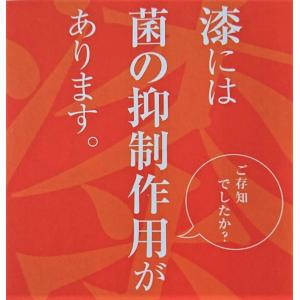 非接触 漆抗菌ドアオープナー 5色 tsugaru-ishioka 12