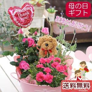 母の日 カーネーション プレゼント 花 ギフト 送料無料 わんちゃんトピアリー カーネーション とミニバラ季節の鉢花 寄せカゴ 花鉢 鉢植え|tsukaguchi