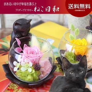 母の日 花 プレゼント ギフト プリザーブドフラワー 迎福 招き猫 送料無料 覗き込む猫背が可愛い ねこ日和  誕生日|tsukaguchi