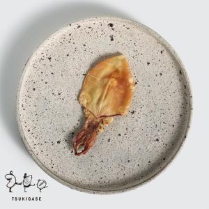 焼き剣先 55g おつまみ 剣先するめ 珍味 つまみ 酒のあて するめ スルメイカ|tsukigase