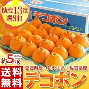 デコポン 柑橘 みかん ミカン 蜜柑 愛媛県・佐賀県・和歌山県産 デコポン 約5kg(22〜24玉) 送料無料 tsukiji-ichiba2
