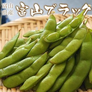 築地市場の仲卸が厳選 富山県 射水産 富山ブラック(枝豆)約250g×3袋(合計約750g)※冷蔵|tsukiji-ichiba2