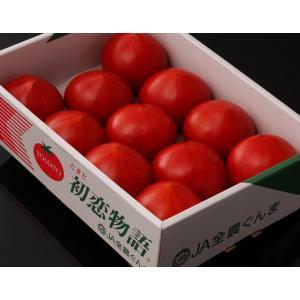 トマト フルーツトマト とまと『初恋トマト』 群馬産 900g 2S〜2Lサイズ (7〜20玉)|tsukiji-ichiba2