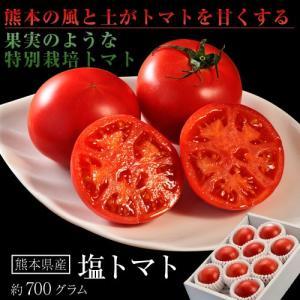 トマト 熊本・八代産 塩トマト 8〜16玉 約700g|tsukiji-ichiba2