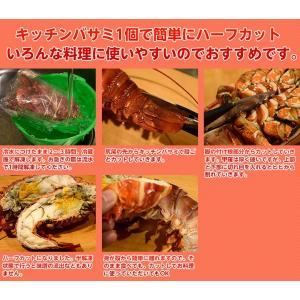 海老 えび エビ ロブスター 南アフリカ産 訳あり 特大ボイルロブスター 600g以上 冷凍 同梱可能|tsukiji-ichiba2|07