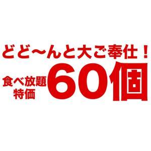えび エビ 海老屋の海老カツ 60個セット(30g×6個入×10袋) ご自宅用 惣菜 トースターOK お手軽 冷凍 送料無料|tsukiji-ichiba2|05
