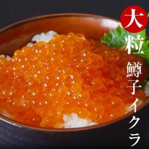 海鮮 いくら イクラ 大粒 鱒子イクラ 約250g 4〜5人前 冷凍 冷凍同梱可|tsukiji-ichiba2