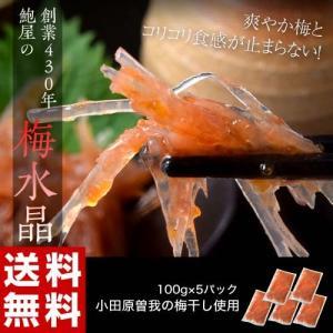 創業430年 鮑屋の梅水晶 100g×5袋 小田原 曽我の梅肉使用 おつまみ 肴 うめ ウメ 冷凍 送料無料|tsukiji-ichiba2
