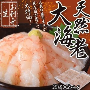 えび エビ お刺身 天然大海老 見た目が悪くて大特価 20尾×2パック 合計600g以上 メガ盛り 増量中 冷凍 送料無料|tsukiji-ichiba2