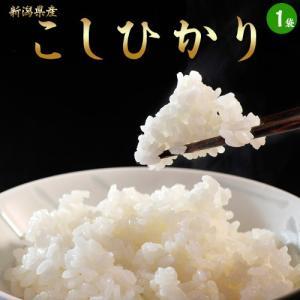 《送料無料》新潟県産「コシヒカリ」 白米 5kg 【同梱不可】【産地直送】○|tsukiji-ichiba2