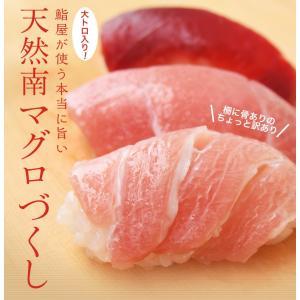 まぐろ マグロ 鮪 天然 南マグロ インドマグロ 大トロ 中トロ 赤身 合計 1kg 冷凍 同梱不可 送料無料|tsukiji-ichiba2|02