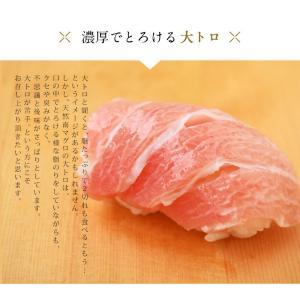 まぐろ マグロ 鮪 天然 南マグロ インドマグロ 大トロ 中トロ 赤身 合計 1kg 冷凍 同梱不可 送料無料|tsukiji-ichiba2|04