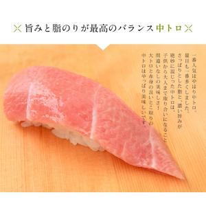 まぐろ マグロ 鮪 天然 南マグロ インドマグロ 大トロ 中トロ 赤身 合計 1kg 冷凍 同梱不可 送料無料|tsukiji-ichiba2|05