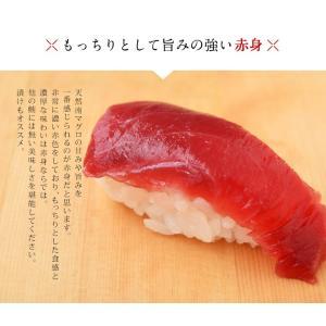 まぐろ マグロ 鮪 天然 南マグロ インドマグロ 大トロ 中トロ 赤身 合計 1kg 冷凍 同梱不可 送料無料|tsukiji-ichiba2|06